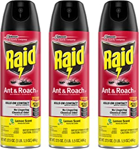 Raid Ant and Roach Killer, Lemon Scent, 17.5 OZ (Pack - 3)