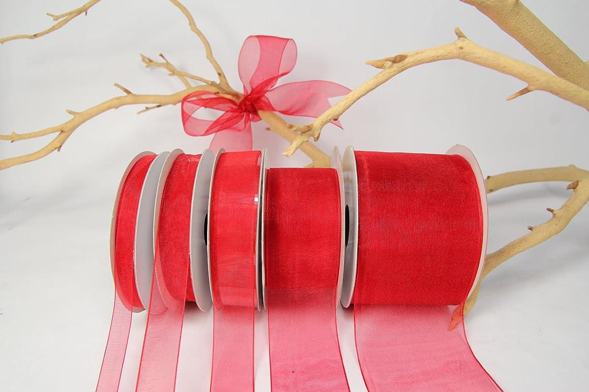 Red Organza Sheer Ribbon-25 Yards X 3/8 Inches