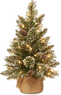 National Tree 2 Foot Glittery Bristle Pine Tree with White Tipped Cones and 15 Battery Operated Warm White LED Lights s in Burlap Base (GB3-392-20-B1)