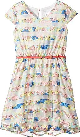 Flutter Sleeve V-Neck Dress with Full Skirt (Big Kids)
