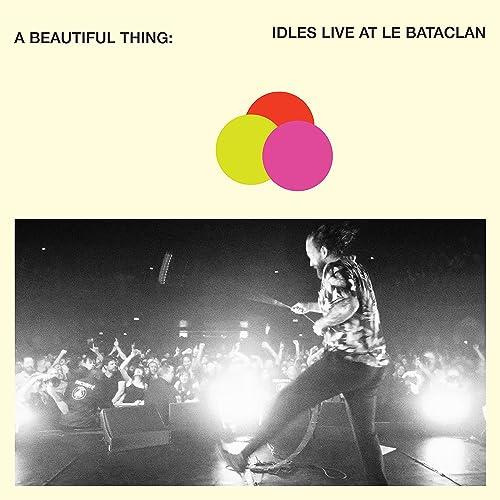 Idles A Beautiful Thing Bataclan Paris