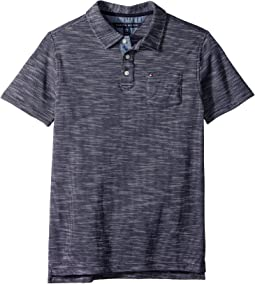 Tommy Hilfiger Kids - Seed Polo (Big Kids)