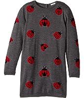 Dolce & Gabbana Kids - Back to School Lady Bug Sweater Dress (Big Kids)