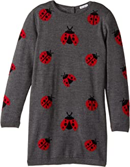Back to School Lady Bug Sweater Dress (Big Kids)