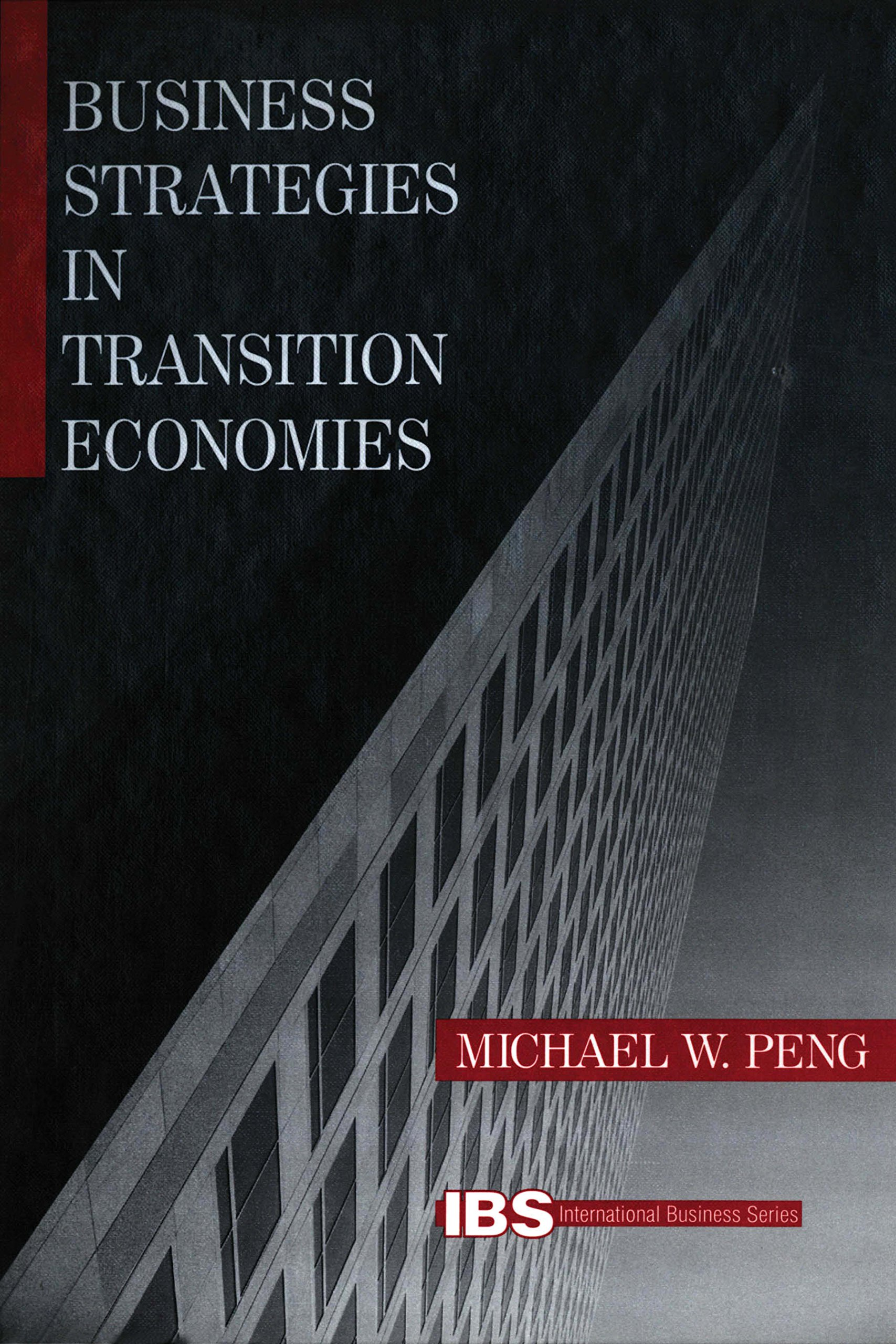 Business Strategies in Transition Economies (International Business series)