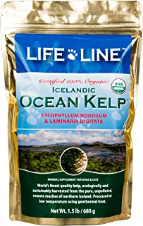 Life Line Pet Nutrition Organic Ocean Kelp Supplement for Skin & Coat, Digestion in Dogs & Cats