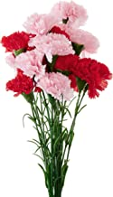 Fourwalls Artificial Synthetic Single Carnation Flower Stick (45 cm Tall, Set of 15, Red-8-Light/Pink-8)