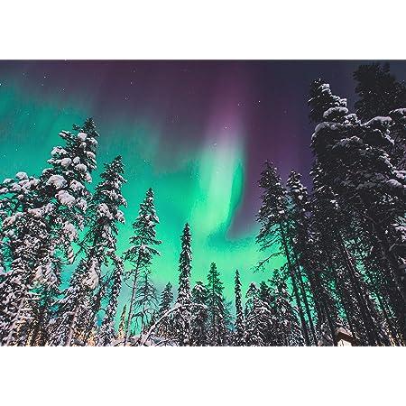 A1Northern Lights Poster Art Print 60 x 90cm 180gsm Aurora Forest Gift #8603