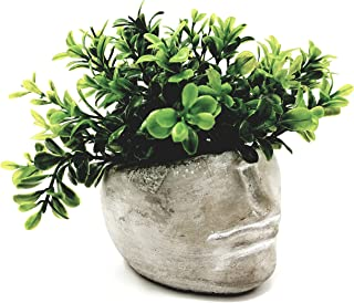 Succulent Planter 4 Inch Modern Cement Indoor Outdoor Planter Face Pot for Home or Office | Great for Succulents, Cactus, Aloe, Moss, Ferns and More (1)