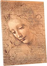 Niwo ART (TM) - Head of a Woman, by Leonardo DaVinci, Oil painting Reproduction - Giclee Wall Art for Home Decor, Gallery Wrapped, Stretched, Framed Ready to Hang (24