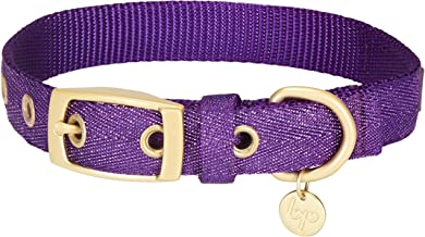 Best glitter dog collar Reviews
