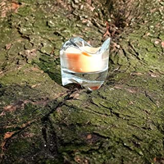 Handmade Scented soy wax Candle in glass holder- NO SMOKE -Foliage collection