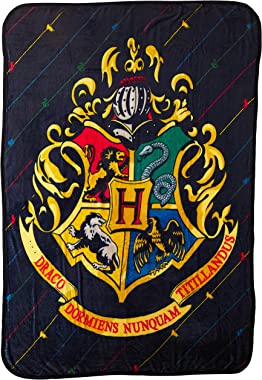 Harry Potter Micro Raschel Throw Blanket, 46 x 60 Inches, House Pinstripes