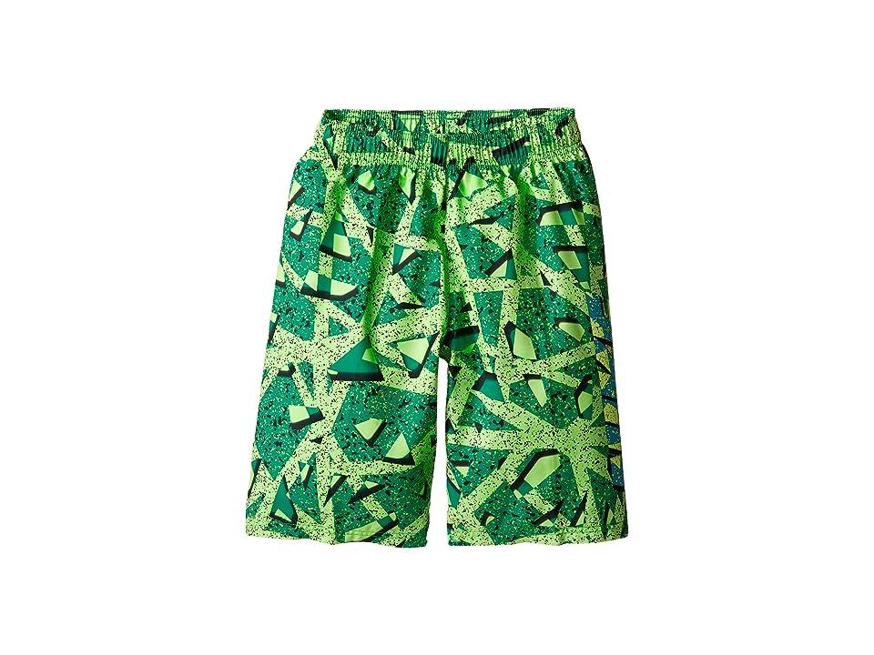 1c10031a07 Nike Kids Granite 9 Volley Shorts (Big Kids) (Electro Green) Boy\