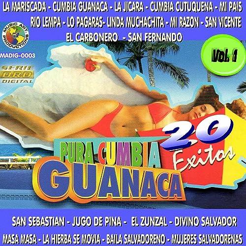 Pura Cumbia Guanaca, Vol. 1