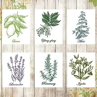 Best canvas botanical prints Reviews
