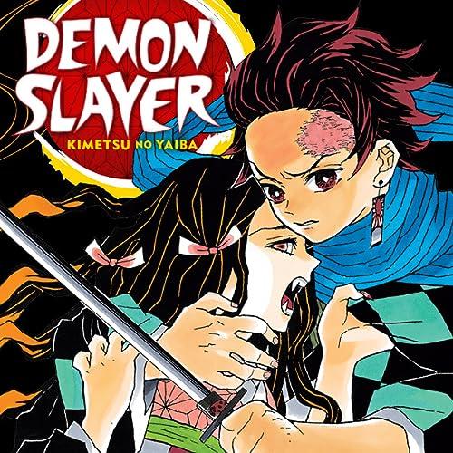 Demon Slayer: Kimetsu no Yaiba (Issues) (20 Book Series)