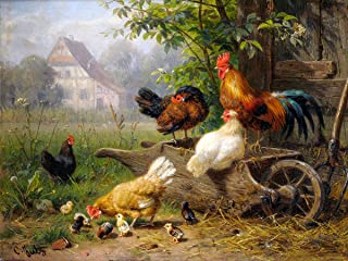 Farm Rooster Chickens by Carl Jutz Accent Tile Mural Kitchen Bathroom Wall Backsplash Behind Stove Range Sink Splashback One Tile 8
