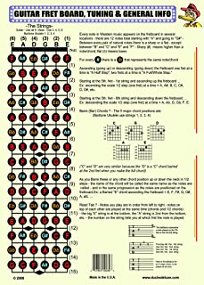 THE GUITAR FRETBOARD & GENERAL INFO POSTER
