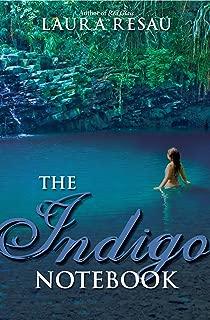 The Indigo Notebook (Notebook Series)