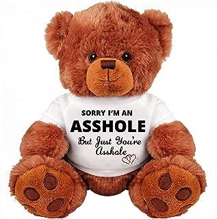 Sorry and Forgive Me Gift: Funny Teddy Bear Gift Couple: Medium Teddy Bear Stuffed Cute Animal