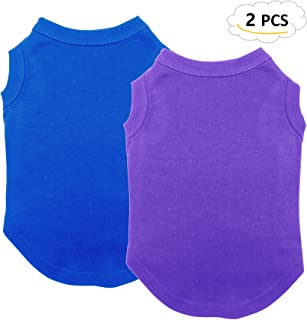 Best shirts for kittens Reviews