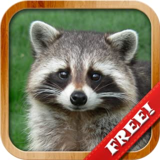 Animals for Toddlers, Animal Pictures Sounds Games