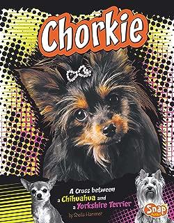 Chorkie (Designer Dogs)