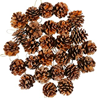 Cooraby 27 Pieces Mini Pine Cones Christmas PineCones Natural Hanging Ornament 3-4cm Pine Cones Pendant With String for Christmas Gift Tag Decoration
