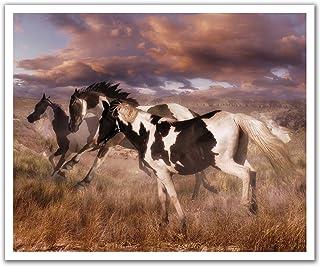 JP لندن poslt2147ustrip Lite قابلة للإزالة ملصق حائط من الفينيل ملصق جداري Rolling Thunder Wild Stallion أحصنة ، 60سم x ...