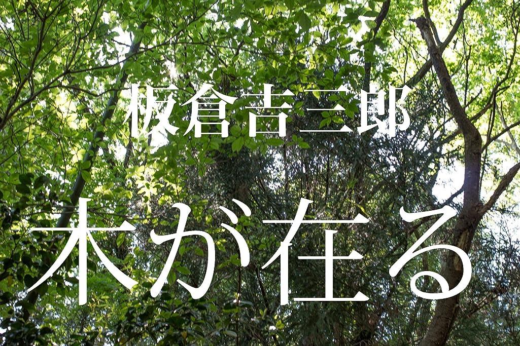 先のことを考えるスポーツの試合を担当している人円周木が在る: ー写真集ー木の風景ー