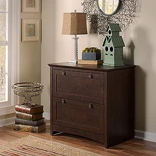 Bush Furniture Buena Vista 2 Drawer Lateral File Cabinet in Madison Cherry