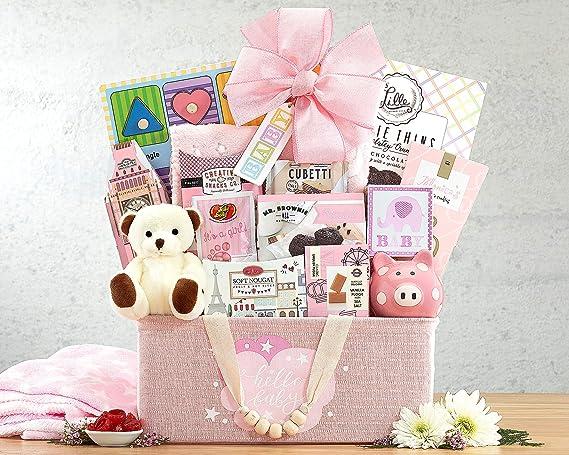 Newborn Baby Gift Basket The Bundle of Joy Pink Newborn Baby Girl