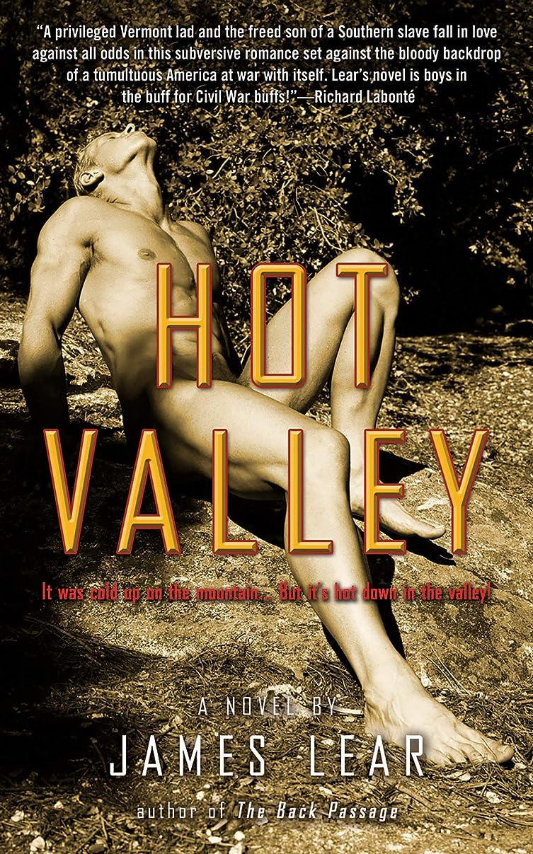 見かけ上枕先見の明Hot Valley: A Novel (English Edition)