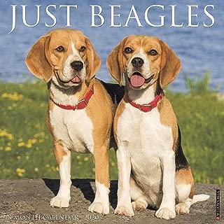 Just Beagles 2020 Wall Calendar (Dog Breed Calendar)