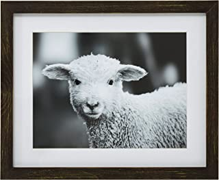 Modern Black and White Lamb Photo Wall Art Décor - 13 x 15 Inch Frame, Rustic Brown