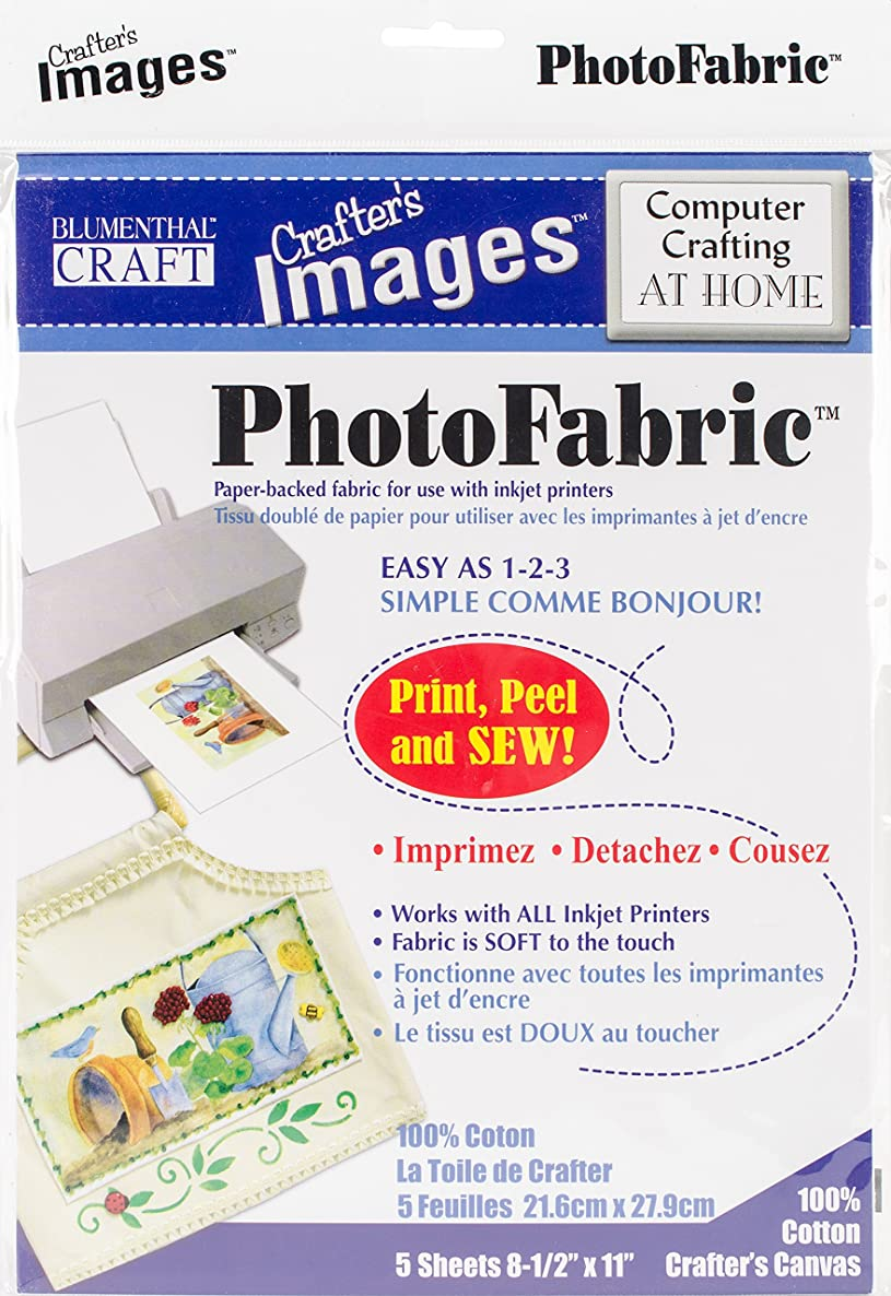 LANSING Photo Fabric Computer Crafting at Home Crafters Canvas