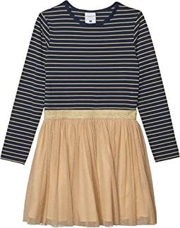 Navy/Gold Striped