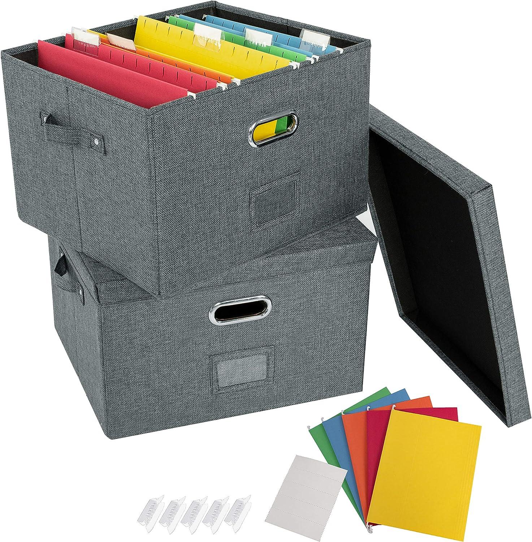 JSungo Popular overseas Max 51% OFF 2 Pack File Organizer Box Li Office with Document Storage