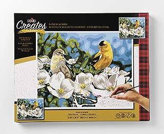 Plaid Creates 26743 No Blending Paint by Number Kit, Multicolor