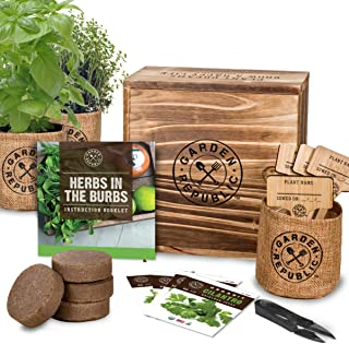 Indoor Herb Garden Starter Kit - Organic, Non GMO Herb Seeds - Basil Thyme Parsley Cilantro Seed, Potting Soil, Pots, Scissors - DIY Grow Kits for Growing Herbs Indoors, Kitchen, Balcony, Window Sill