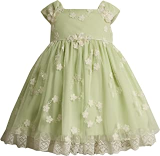 Bonnie Baby All Over Embroidered Mesh Dress