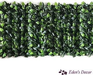 Eden's Decor 120