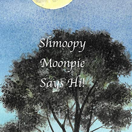 Shmoopy Moonpie Says Hi! (Shmoopy Moonpie Guardian Angel Book 1)