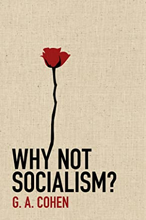 Why Not Socialism? (English Edition)