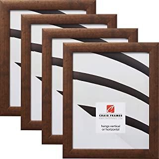 Craig Frames 23247881 12 x 36 Inch Picture Frame, Rustic Copper, Set of 4