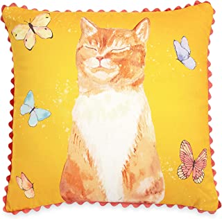 pioneer woman cat pillow