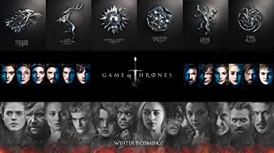 "Limited Time Sale 28"" x 16"" Game of Thrones Poster Character Poster with GoT Houses"