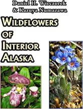 Wildflowers of Interior Alaska