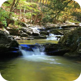 Nature Sounds - Relaxing & Sleep